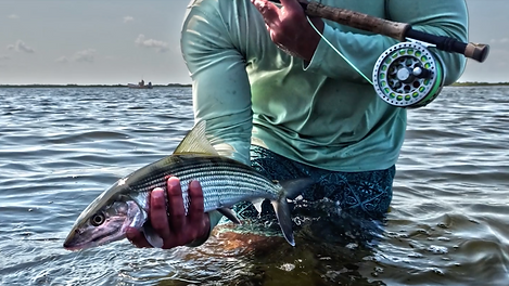 Cozumel fly fishing | Aquarius Fishing