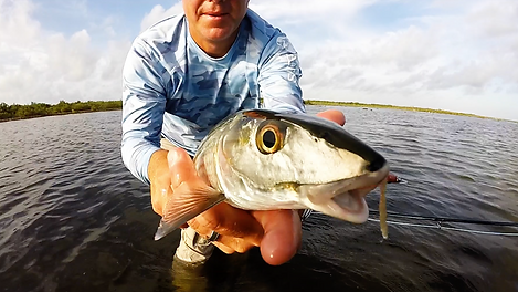 Auarius Fishing Bonefish Video