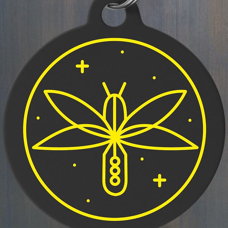 Firefly Run!