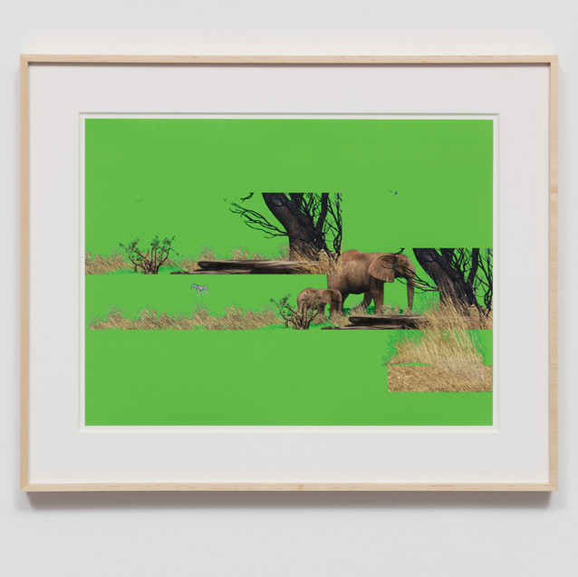 Cortright, Petra - PC20.01a.14 - (new ve