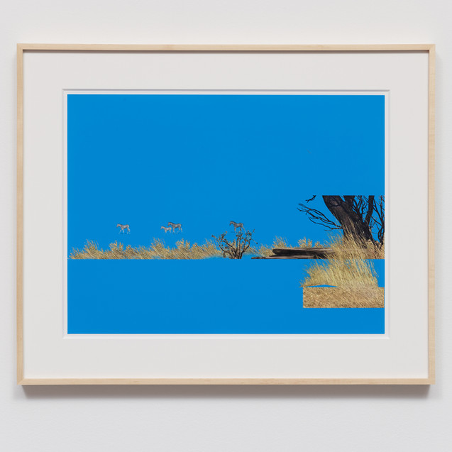 Cortright, Petra - PC20.01a.13 - (multil