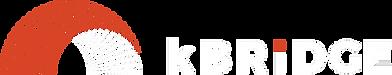 Knowledge Bridge Partners, including sales, service, and app development.