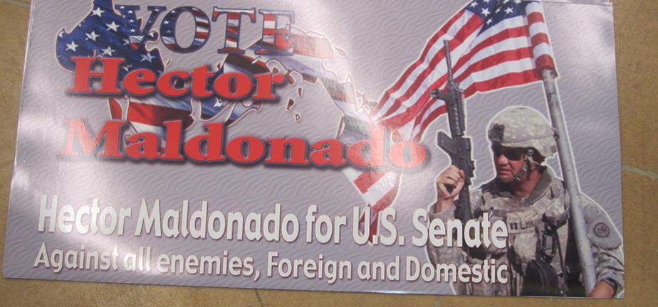 US SENATE MAGNETIC ELECTION.jpg