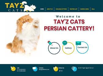 Tayzcats Cap.JPG