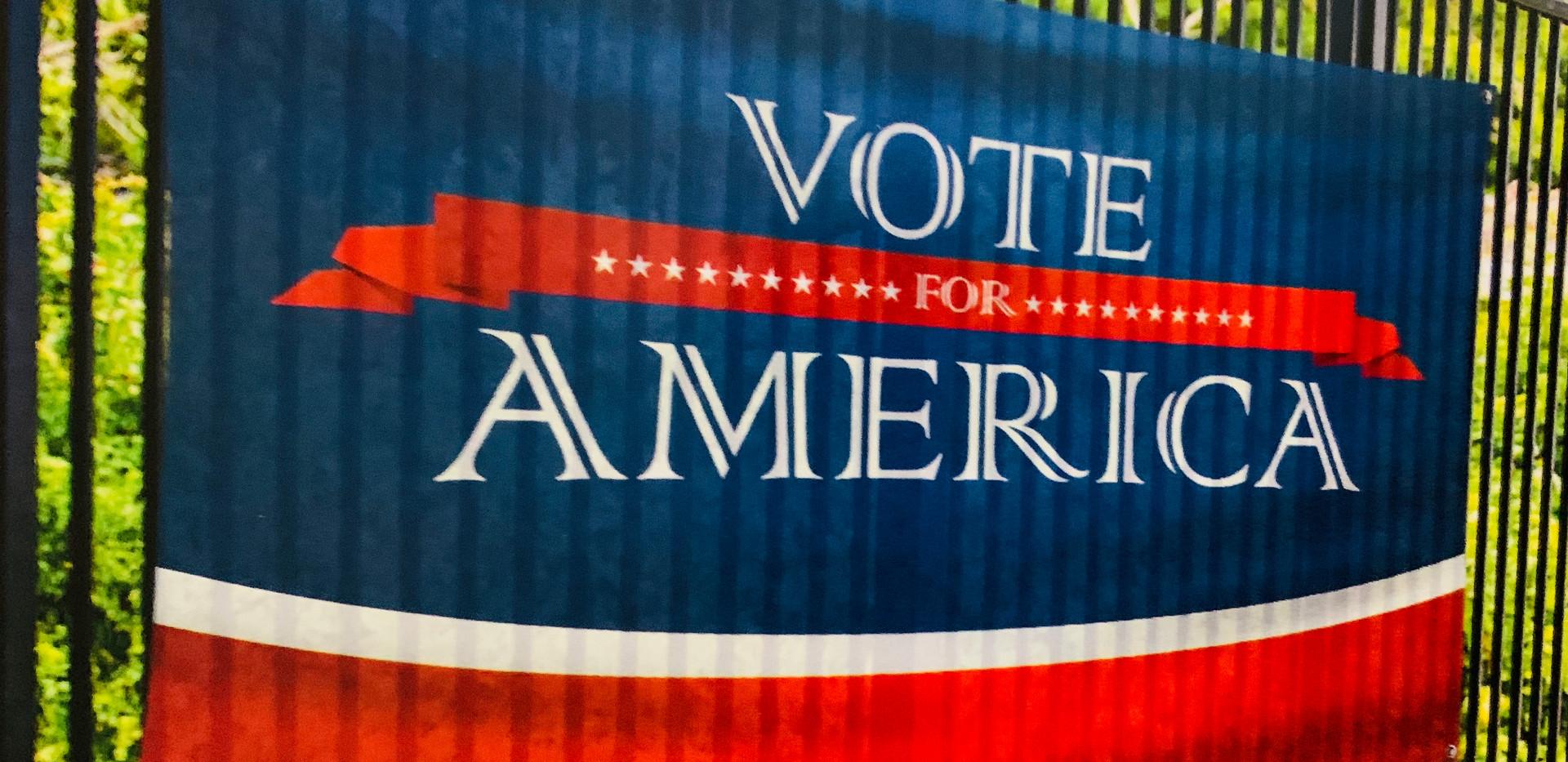 Political Banner.jpg