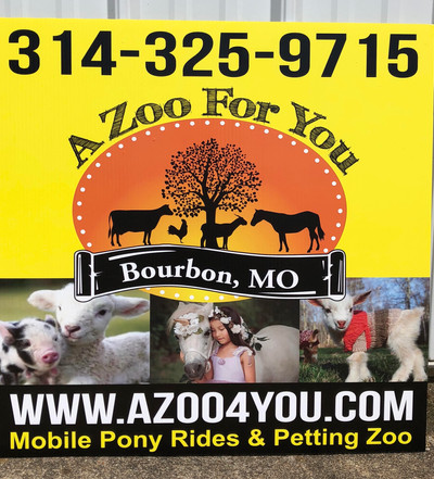 Zoo for You