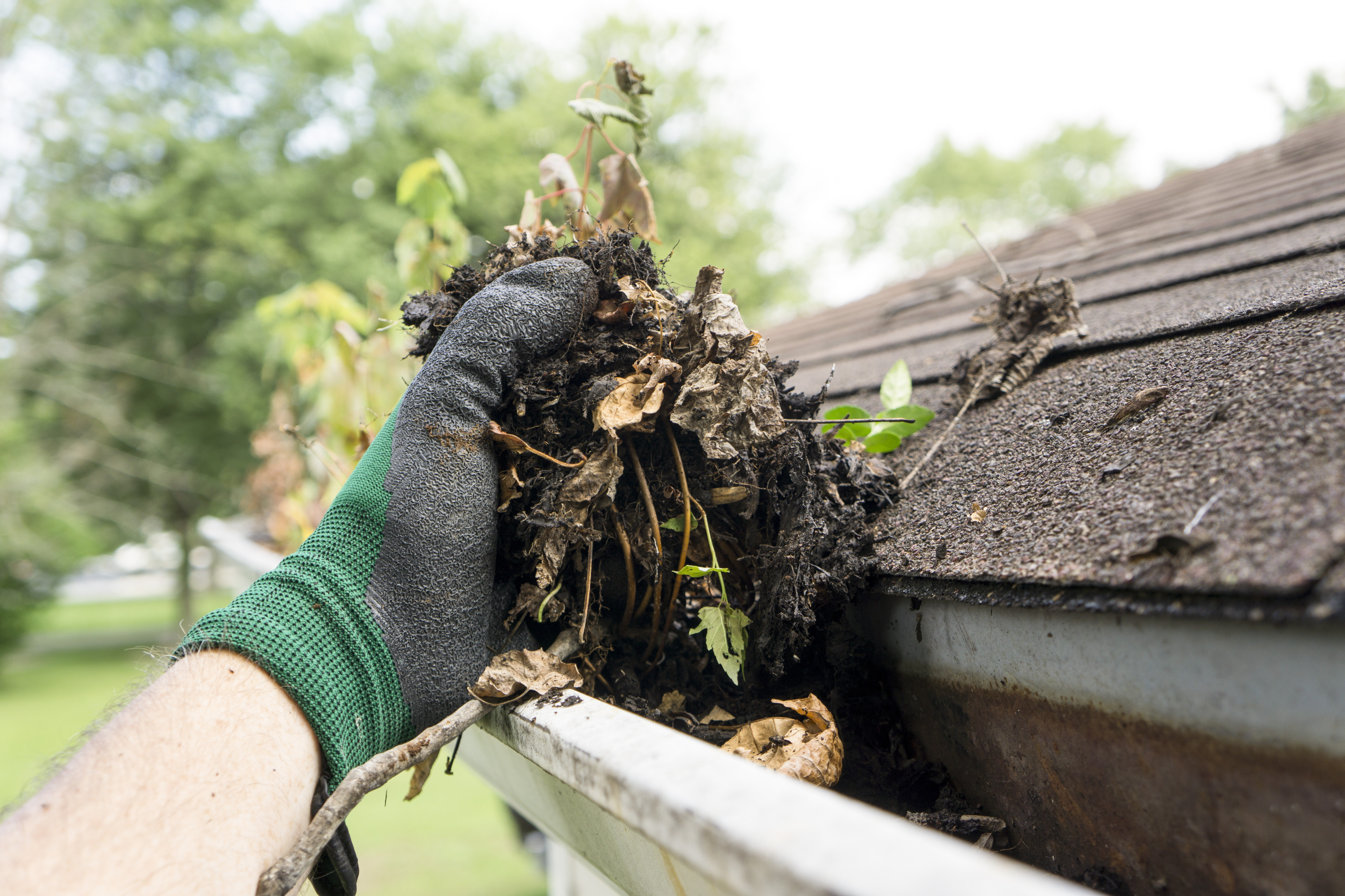 Gutter Cleaning Estimate