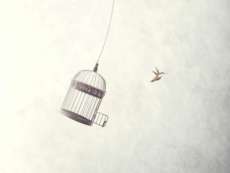 Everybody's Free...
