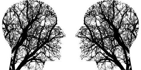 Deux arbres en forme de têtes vues de profil et se faisant face, dont les branches rappellent les circonvolutions du cerveau.