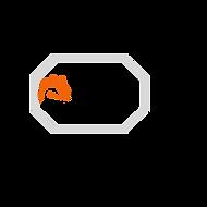 Velocity Pro Logo.png