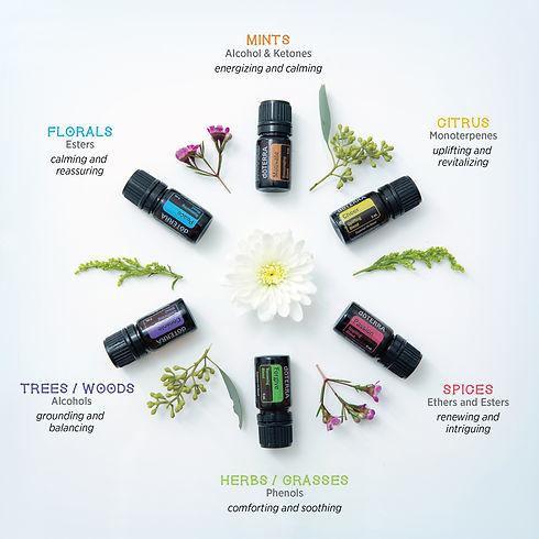 aromatherapy-infographic (1).jpg