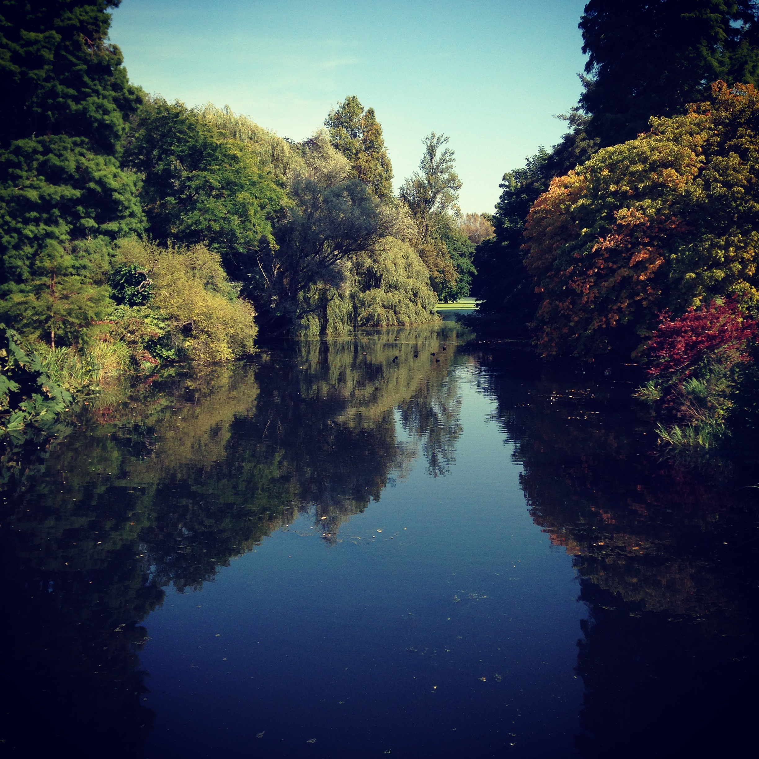 Rivers of Syon Park