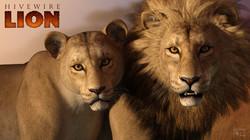 HiveWire Lions