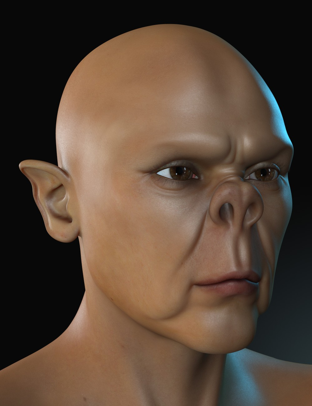 Pug Face Morph
