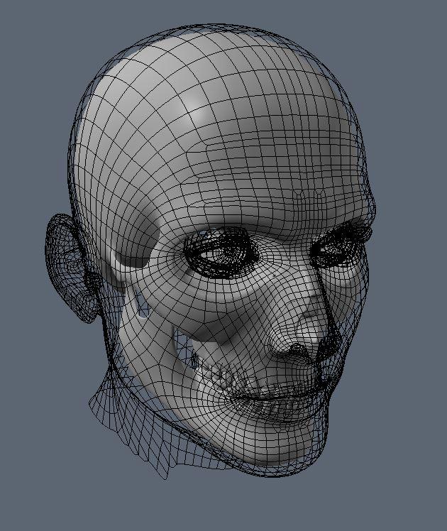 Skull WIP 1