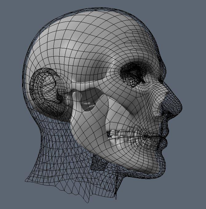 Skull WIP 3