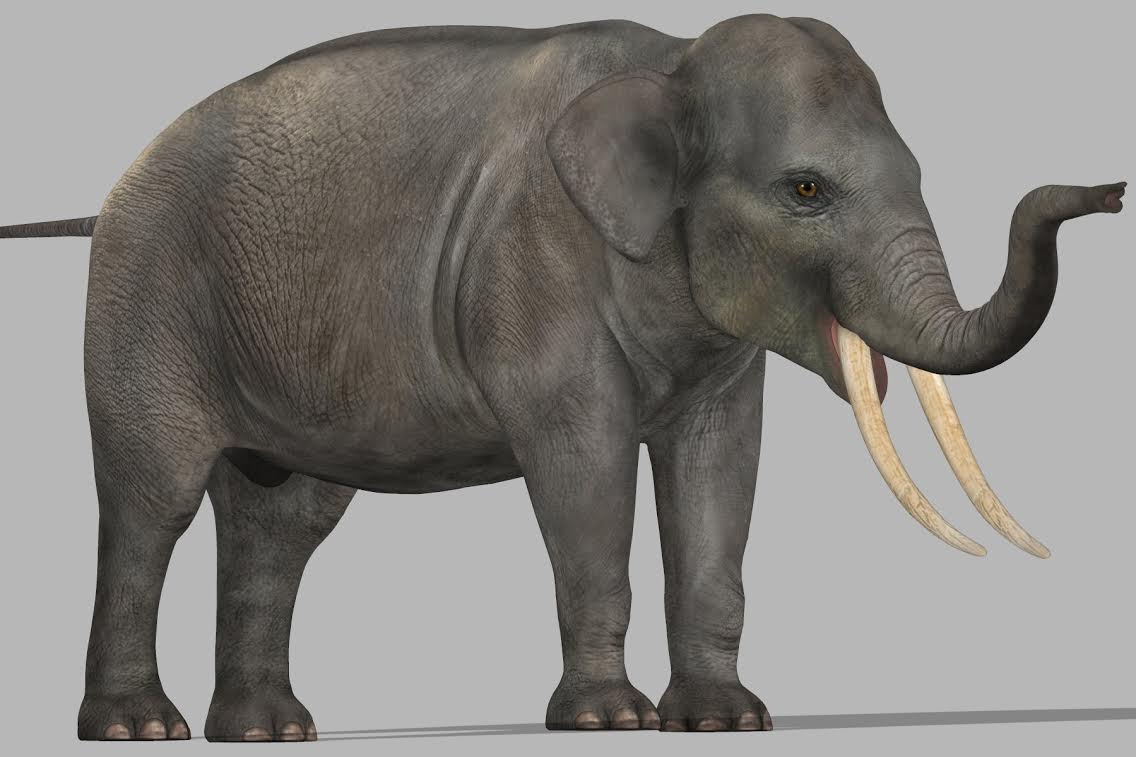HiveWire Asian Elephant WIP