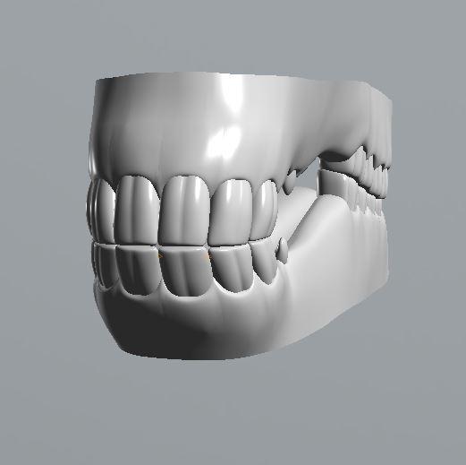 Horse Teeth Work