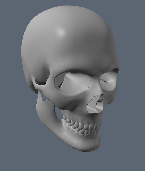 Skull WIP 2