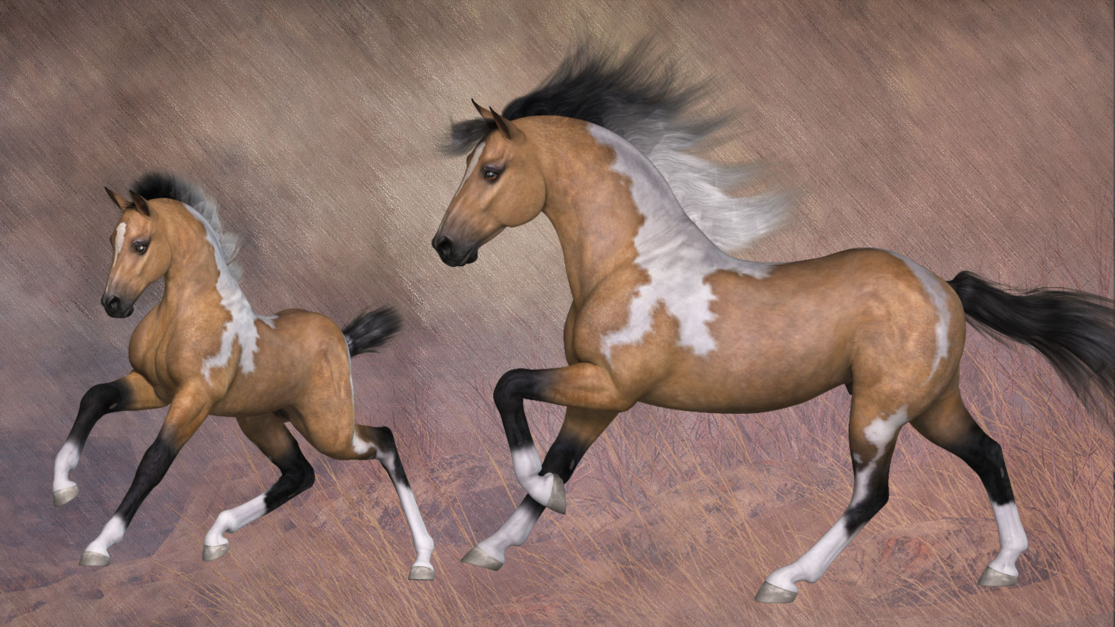 Quarter Horse And Foal