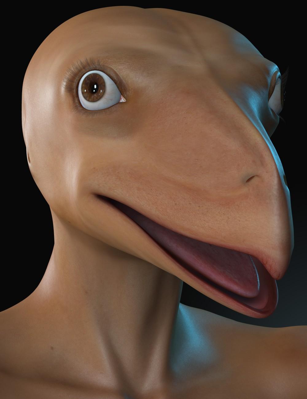 Bird Morph