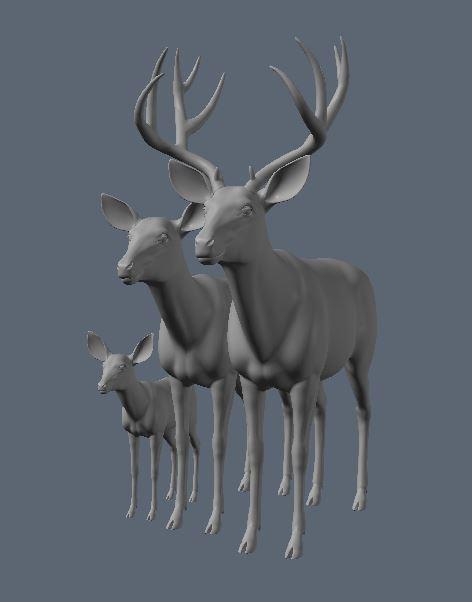 Mule Deer Family