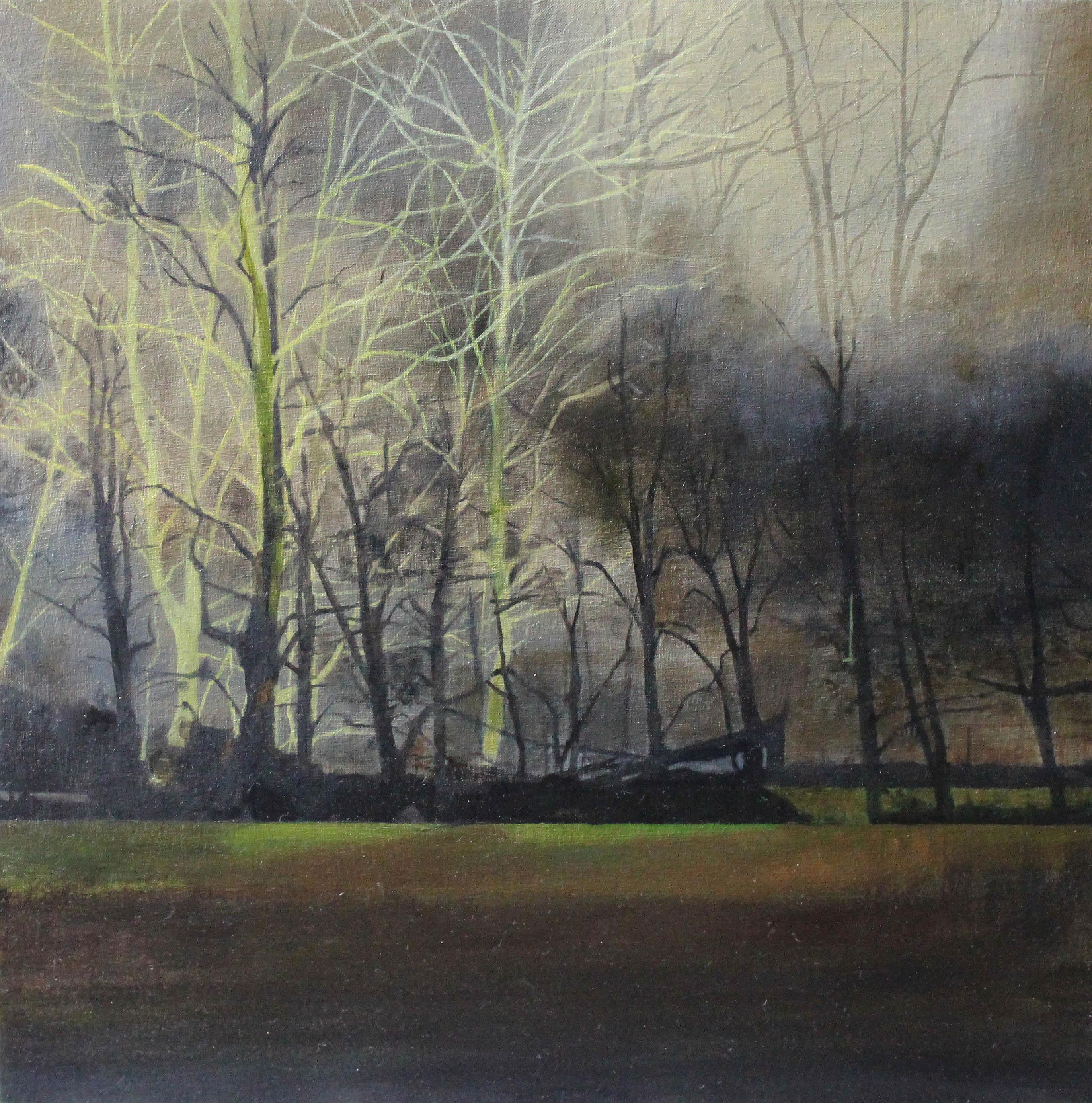 Woodland Mist
