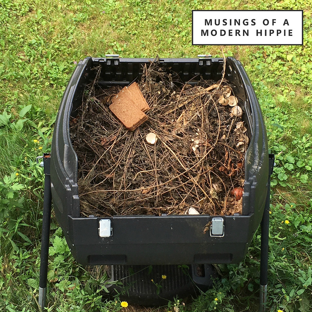 Composting for Beginners | Musings of a Modern Hippie