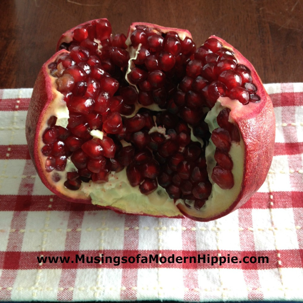 Cultured Cranberry Pomegranate Sauce | Musings of a Modern Hippie