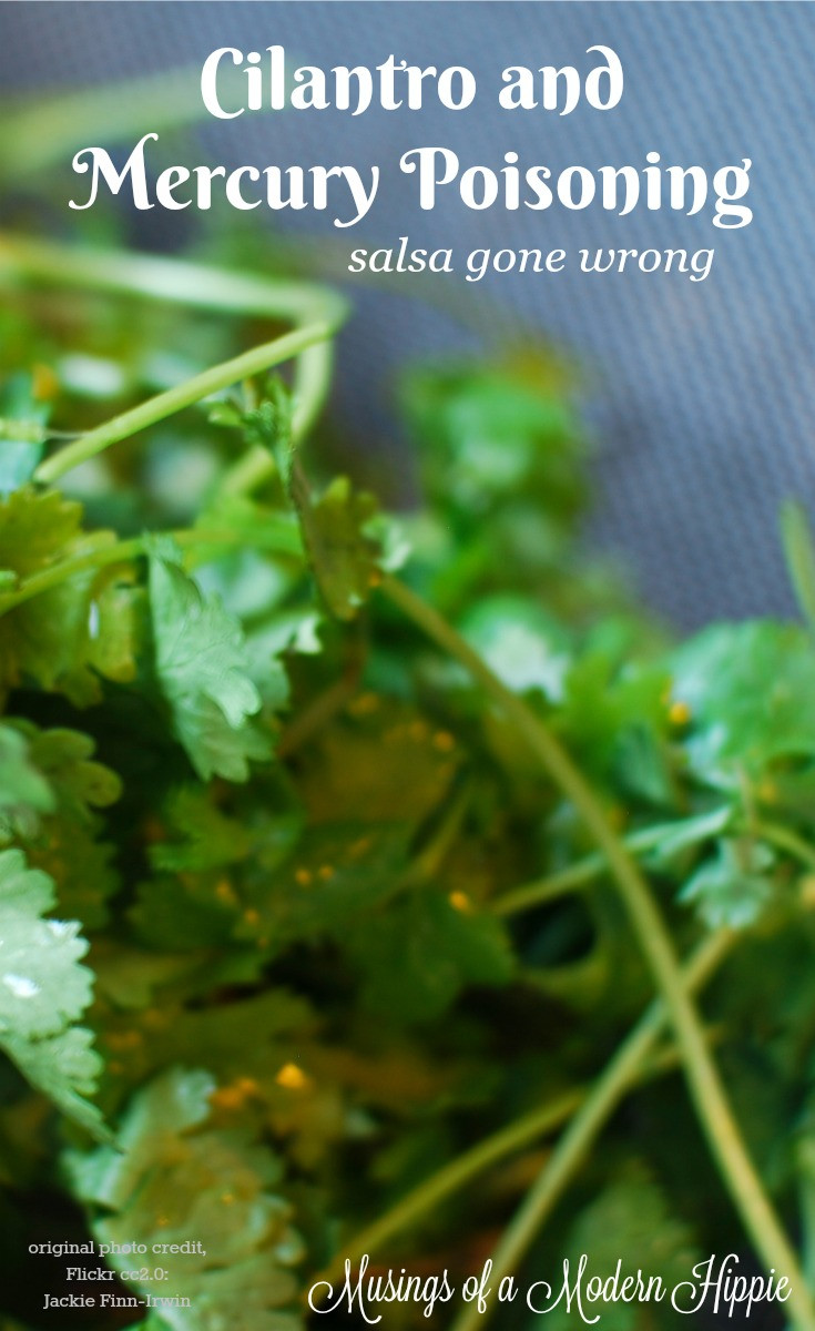 Cilantro and Mercury Poisoning | Musings of a Modern Hippie