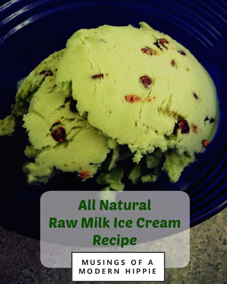 Raw Milk Ice Cream Recipe | Musings of a Modern Hippie