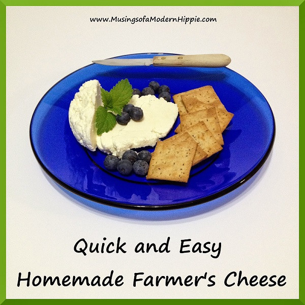 Easy Homemade Cheese | Musings of a Modern Hippie