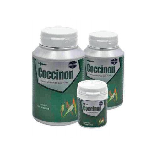 Coccinon - Amgercal