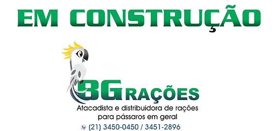 em construção bg.png