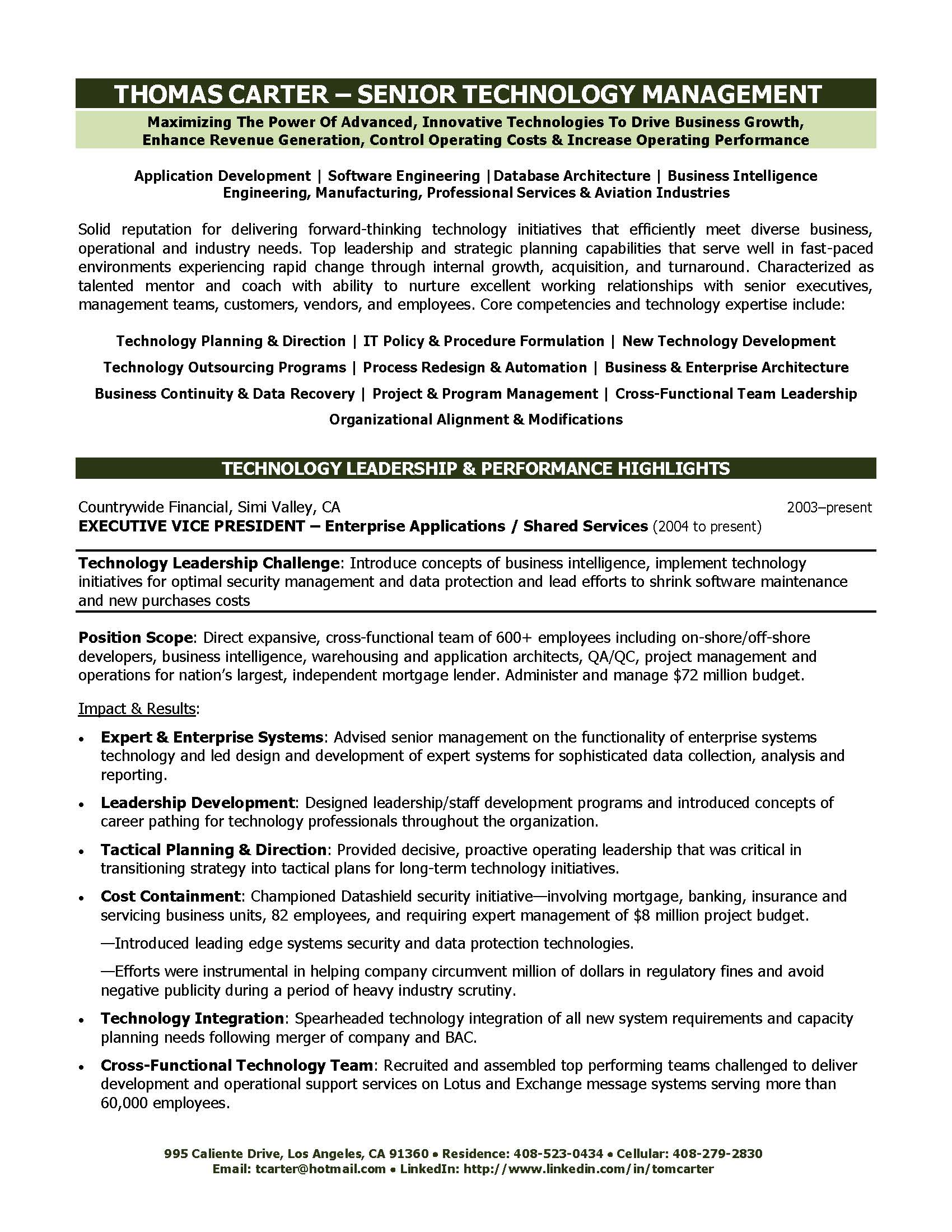 Technology Executive Resume Sample