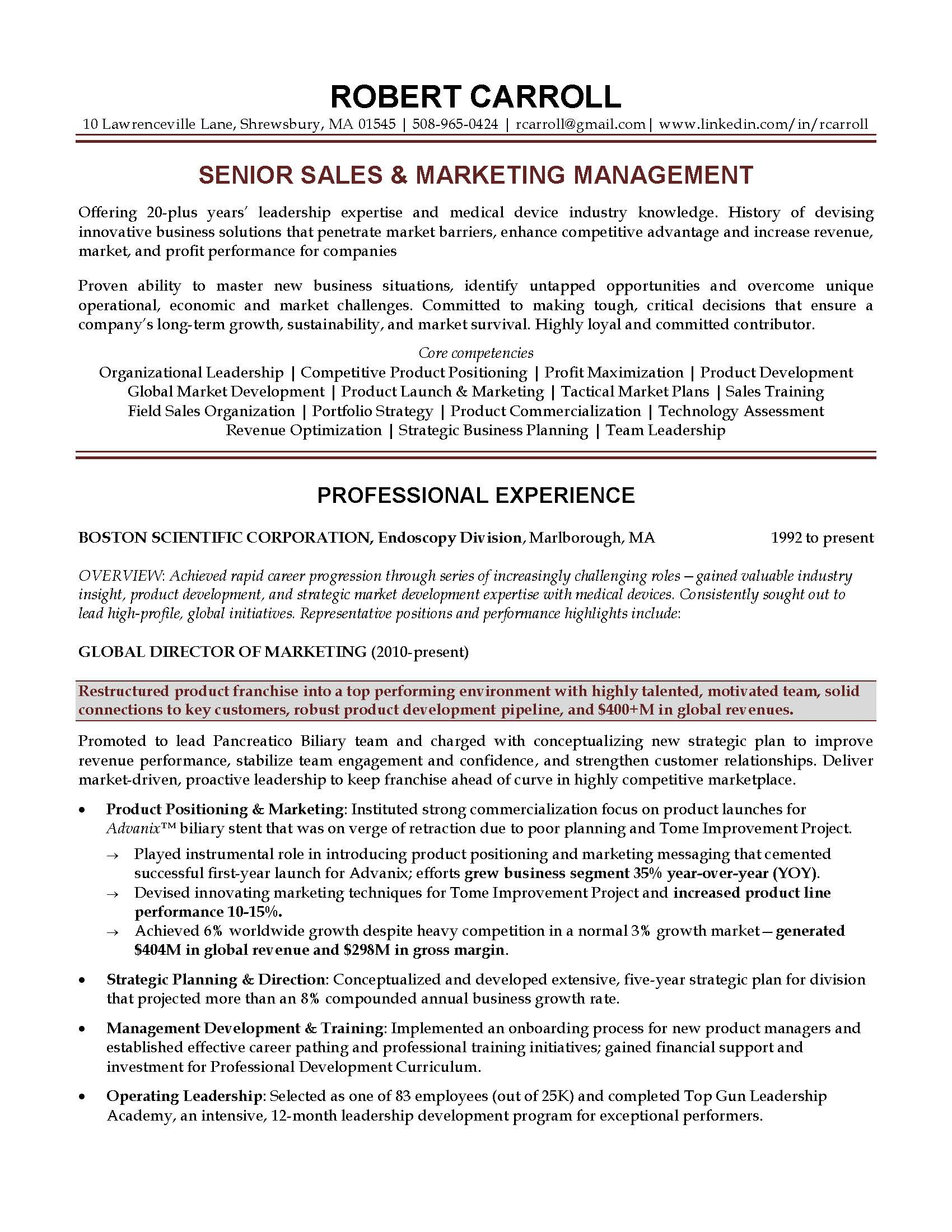 Sales - Marketing Executive Resume Sampl