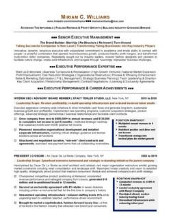 CEO - Executive Resume Sample