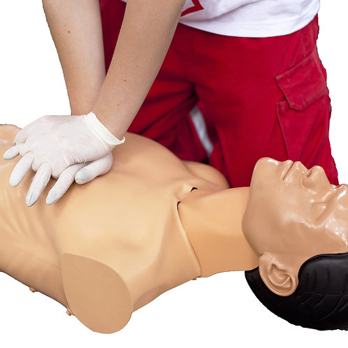 First Aid, CPR & AED Training