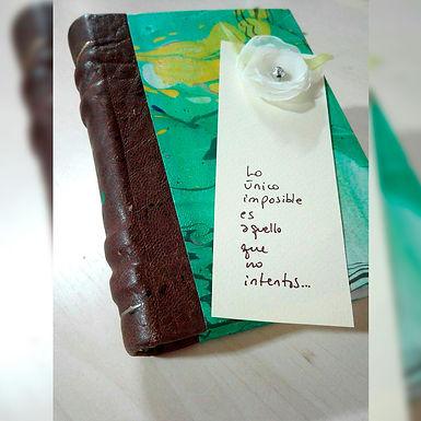 Diario de Viaje - Espíritu Indigo