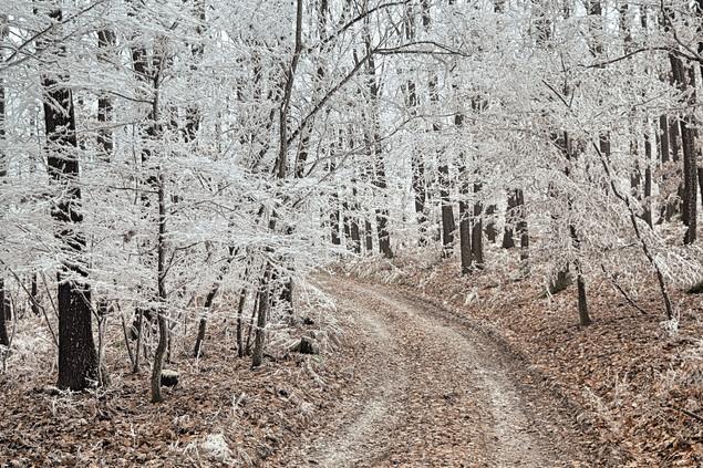 Kéktúrázás télen