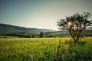 Jósvafő Szőlőhegy Aggteleki Nemzeti Park
