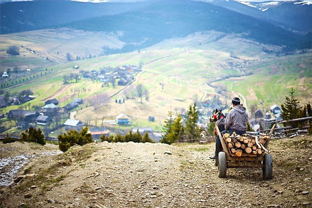 Horse and carriage in Carpathians