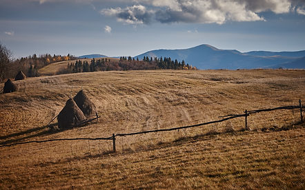 Hay stacks in the Carpathians
