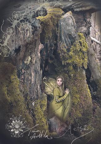 Keiju Metsässä.jpg