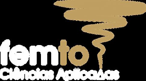 FEMTO Ciências Aplicadas - Solutions, optimization, and innovation though CFD (Computational Fluid Dynamics)