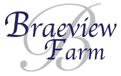 BraeviewLogoLast