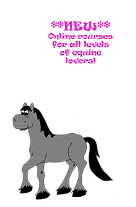 Horseblurb.png
