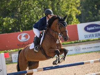 Stiffness: the horse's perspective