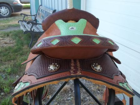 DK100512 barrel saddle back shot