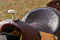3Barrel Saddle3